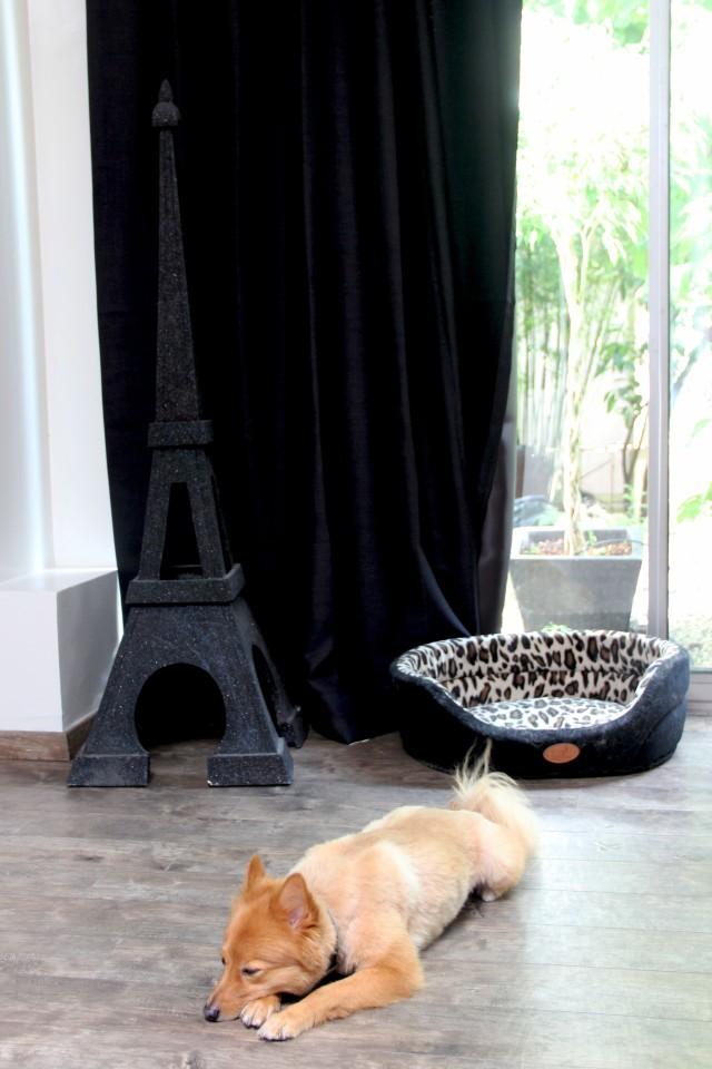 Chez Clem et Adri | The world of Bergère